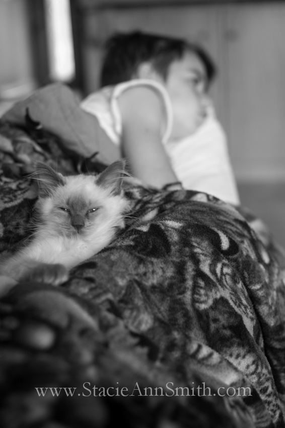 www.stacieannsmith.com #DayInALife #RainDays #documentaryPhotography #kitten